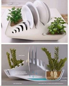 Eco friendly dish rack #environmentfriendlyliving