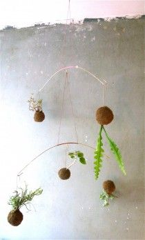 Planteplaneter | Plant Planets | Planteplanet Design