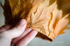 how to make a crown of leaves step by step instructions