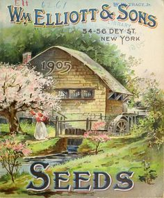 Wm. Elliott & Sons. Seeds 1905. U.S. Department of Agriculture, National Agricultural Library