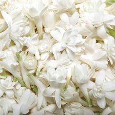 Oneself Hawaiian Flower Lei Perfume Balm