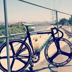 fixie hed 3 bianchi