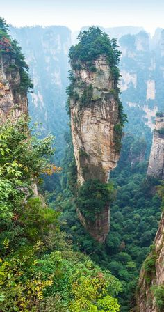 Alone rock column mountain (Avatar rocks). Zhangjiajie National Forest Park was…