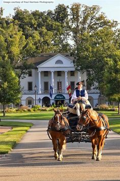Bride and Groom Leaving the Williamsburg Inn in a Carriage