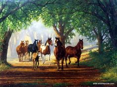 Artist Chris Cummings Unframed Horse and Colt Picture Country Lane | WildlifePrints.com