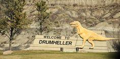 Oulussa on tämän kesän Age Of The Dinosaur -näyttely. Sen mainokset toivat mieleeni vierailuni dinosaurus museossa Kanadassa pari vuotta sitten.