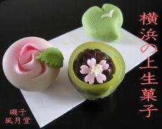 横浜そごう限定商品~横浜の上生菓子(初夏編) : 横浜和菓子 磯子風月堂(和菓子屋のムスメ)