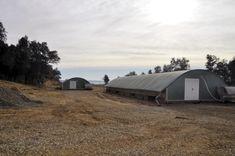 Selecciones Avícolas - Diversificación ecológica Outdoor Gear, Tent, Types Of Chickens, Tentsile Tent, Outdoor Tools, Tents