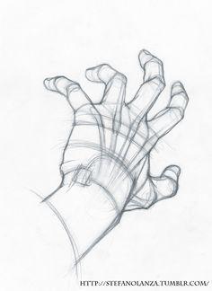 Pencil Art Drawings, Art Drawings Sketches, Cute Drawings, Human Anatomy Drawing, Anatomy Art, Hand Drawing Reference, Art Reference Poses, Hand Sketch, Drawing Base