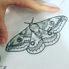I suck bc with tattoos I literally want everything on my wrist. but for a moth I kinda want one like on my chest? Or side or smthn idk Neue Tattoos, Body Art Tattoos, Small Tattoos, Cool Tattoos, Moth Tattoo Design, Tattoo Designs, Tattoo Ideas, Tattoo Sketches, Tattoo Drawings
