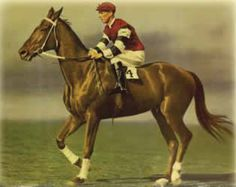 Phar-Lap, winning Australian racehorse in the years 1928-1932.  Excellent 1983 movie of the same name shares the story of his stellar life and untimely death, and the people in it, both good and bad.