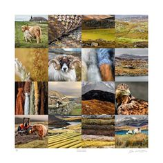 Ian Lawson - Lasting Traces (Outer Hebrides)