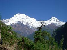 annapurna base camp trekking is the best trek and cheper than other trekking route. www.nepaleverestguide.com