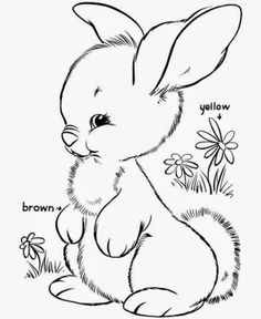 On Easter Day Colouring Pages Is Mainly Recognized For Egg And Bunny These Types Of