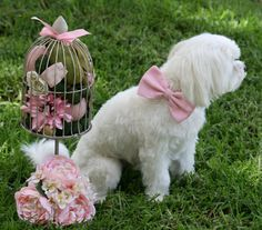 Pink Dog Bow Tie, Pet Accessory, Dog Birthday, Pet wedding accessories, Pink Lovers on Etsy, $27.50