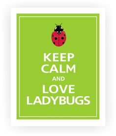 Keep Calm and LOVE LADYBUGS Print 8x10 Sour Apple by PosterPop, $10.95