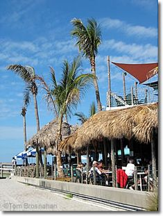 Sharky's on the Pier, Venice Florida