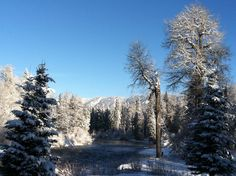 Sunshine and fresh snow on the Wenatchee River viewed from the back deck at the Lodge