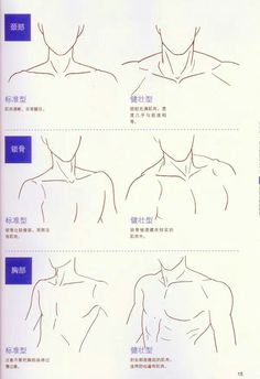 Human Figure Drawing Reference Neck and shoulders artist reference anatomy drawing tutorial. Drawing Skills, Drawing Lessons, Drawing Techniques, Drawing Tips, Drawing Sketches, My Drawings, Sketching, Drawing Ideas, Sketch Ideas