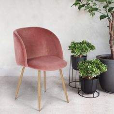 Amazon.com: Mid-Century Velvet Accent Living Room Chair Upholstered Club Chair Armrest with Solid Steel Leg for Living Room Bedroom Reception Room Modern Furniture,Rose Pink: Kitchen & Dining