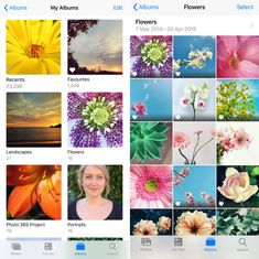 How To Use iPhone Photo Albums To Organize Photos - Discover how use iPhone photo albums to organize and manage your photos. Organizing your photos mak - 365 Photo, School Photography, Project 365, Photo Projects, Desktop Computers, Iphone Photography, Used Iphone, Geek Stuff, Albums