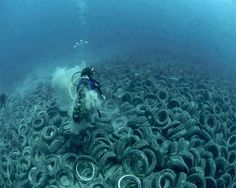 Approximately two million old car tire's are on the ocean floor off Fort Lauderdale in the US, dumped in the with the intent of creating an artificial reef. The tires are now scouring the ocean floor and wedging against the natural reef, killing coral. Fort Lauderdale, Ocean Pollution, Plastic Pollution, Pollution Environment, Green Environment, Save Our Oceans, Save Our Earth, Environmental Issues, Environmental Science