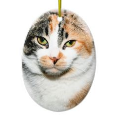 DOUBLE TABBY CAT ORNAMENT