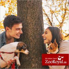"""Vor einigen Wochen haben wir eine Umfrage zum Thema """"Flirtfaktor Hund"""" gestartet. Welche interessanten Ergebnisse dabei raus gekommen sind, könnt ihr hier nachlesen: http://www.zooroyal.de/media/pdf/010-zooroyal-flirtfaktor-hund.pdf  #ZooRoyal #Love #Flirt"""