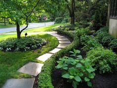 Stone path with short hedges bordering flower bed.