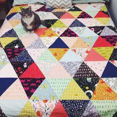 "748 Likes, 41 Comments - Grainline Studio (@grainlinestudio) on Instagram: ""Cat on a cat quilt!! #roamy #quilting"""