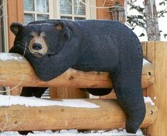 railing bear--just a picture of wood carved bear hanging over railing