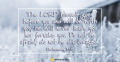 View Your Daily Verse - Deuteronomy - Your Daily Verse. Share, pin and save today's encouraging Bible Scripture. Praise Songs, Praise God, Scripture Cards, Bible Scriptures, Bible Prayers, Scripture Quotes, Mother Of Christ, Surrender To God, Bible Verse Pictures