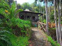 Schau Dir dieses großartige Inserat bei Airbnb an: Landhaus Montiel - Häuser zur Miete in Icod de los Vinos