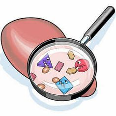 http://liverbasics.com/high-liver-enzymes.html Developing elevated liver enzyme concentrations is normally a signal of significant liver health issues. It is possible to usually find out from the sort of enzymes as well as degrees of modification.