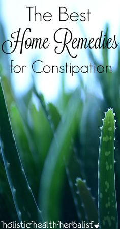 The Best Home Remedies for Constipation - Learn about which home remedies work best for constipation. They're simple and effective!