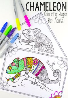 Free Colouring Pages for Grown Ups – cool colourful chameleons