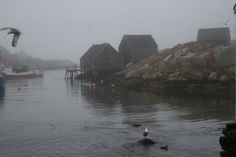 Peggy's Cove in January