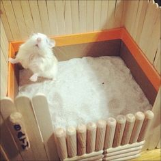 DIY-Hamster-Bath-House
