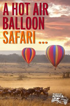A hot air balloon safari over the plains of the Serengeti or the Maasai Mara is a sublimely serene way to add a little romance to your safari. ____________________________________________________ #shadowsofafrica #travelafrica #thisisafrica #africananimals #africansafari #safariinafrica #africa #safari #wildafrica #africananimals #doyourtravel #travelmore #africanprints #travelmore