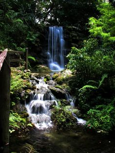 And there are definitely fairies riding acorn caps down the waterfalls of Rainbow Springs State Park. Visit Florida, Old Florida, Florida Vacation, Florida Travel, Florida Trips, Vintage Florida, Vacation Spots, Travel Usa, Rainbow Springs State Park