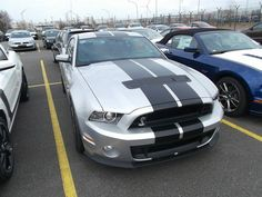 Ford Mustang GT 500 von www.mustang24.de Ford Mustang Gt, Gt 500, Bmw, Cars, Vehicles, Autos, Car, Car, Vehicle