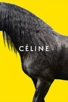 Céline Winter 2016 campaign - Charlee Fraser, Karly Loyce, Lena Hardt and Marte… Juergen Teller, Graphic Design Posters, Graphic Design Inspiration, Celine Campaign, Fashion Identity, Horse Posters, Top Luxury Brands, Fashion Advertising, Brand Advertising