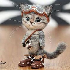 Ayukawa Tammy sur-Filztiere- # Tammy- # Ayukawa-l . Baby Animals Super Cute, Cute Little Animals, Cute Funny Animals, Baby Animals Pictures, Cute Animal Pictures, Cute Animal Drawings, Cute Drawings, Disney Drawings, Cute Puppies