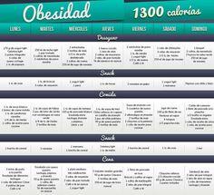 1300 calorias dlieta