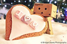 Danbo loves you ... and cookies :)