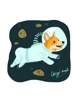 Corginauta.  #dogs #space #spacesuit
