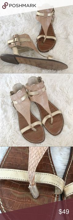 Sam Edelman Nude Snake Grenna Gladiator Sandals Sam Edelman gladiator sandal with gold and nude color scheme with contrasting snake skin and textured material. Three buckle straps on each shoe. Very good gently used condition. Only worn two to three times. Size 9. Sam Edelman Shoes Sandals