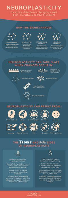 http://www.nicabm.com/brain-how-does-neuroplasticity-work/