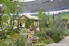 プロヴァンスの庭『Provence〜プロヴァンスの幸せな一日』(ローラン・ボーニッシュ)