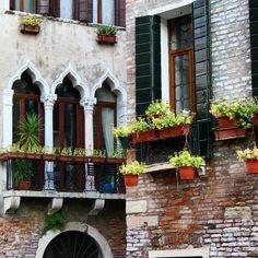 Only in #Venice #windows #corners #venetogram #visitveneto #italy #travels #wanderlust #beautifuldestinations